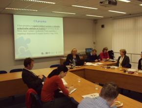 Workshop riziková prémie WACC, 15. 11. 2012, Praha